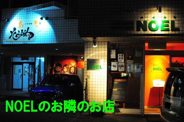 NOEL (6)