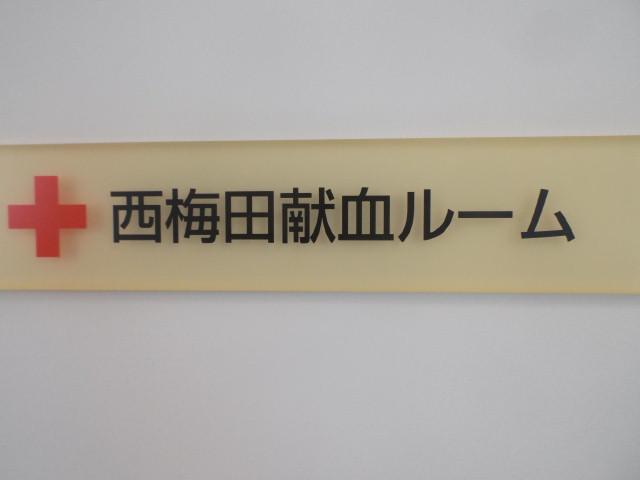 DSCF9731.jpg