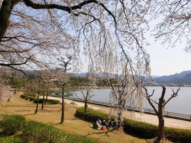 東郷湖にある羽合温泉と裏大山を望む枝垂れ3