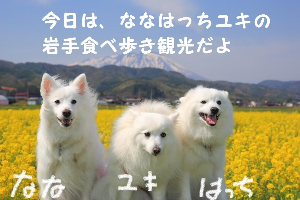 0_201405052139365ed.jpg