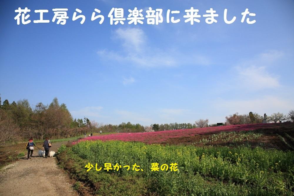 10_20140505214151f64.jpg