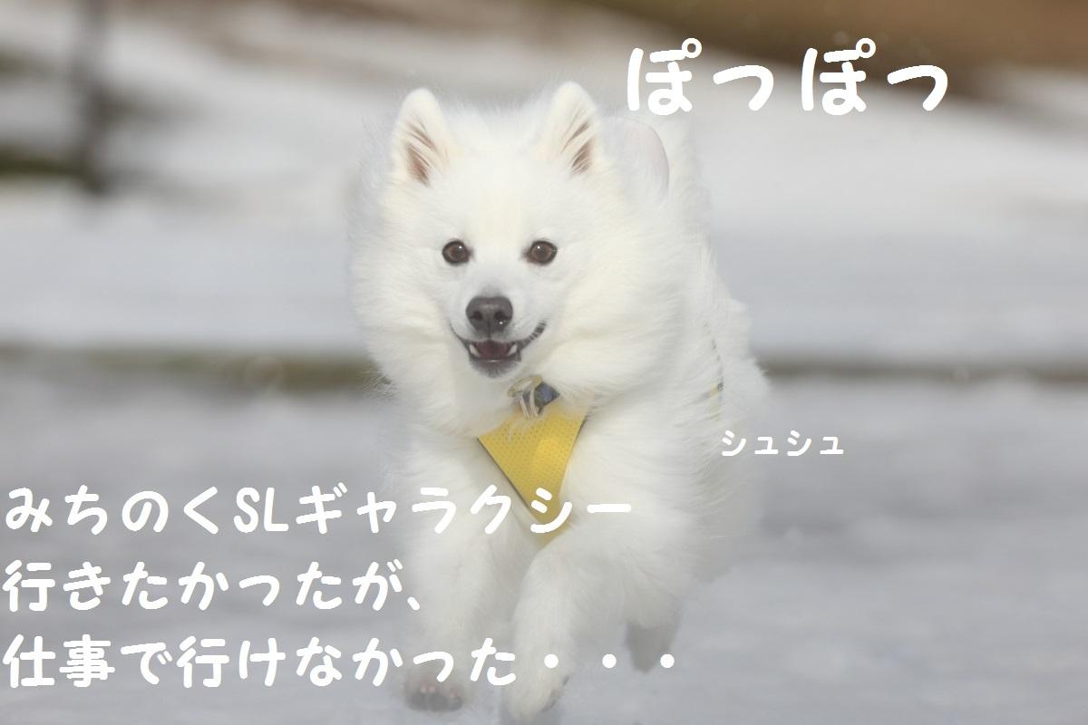 1_201403072129434cc.jpg