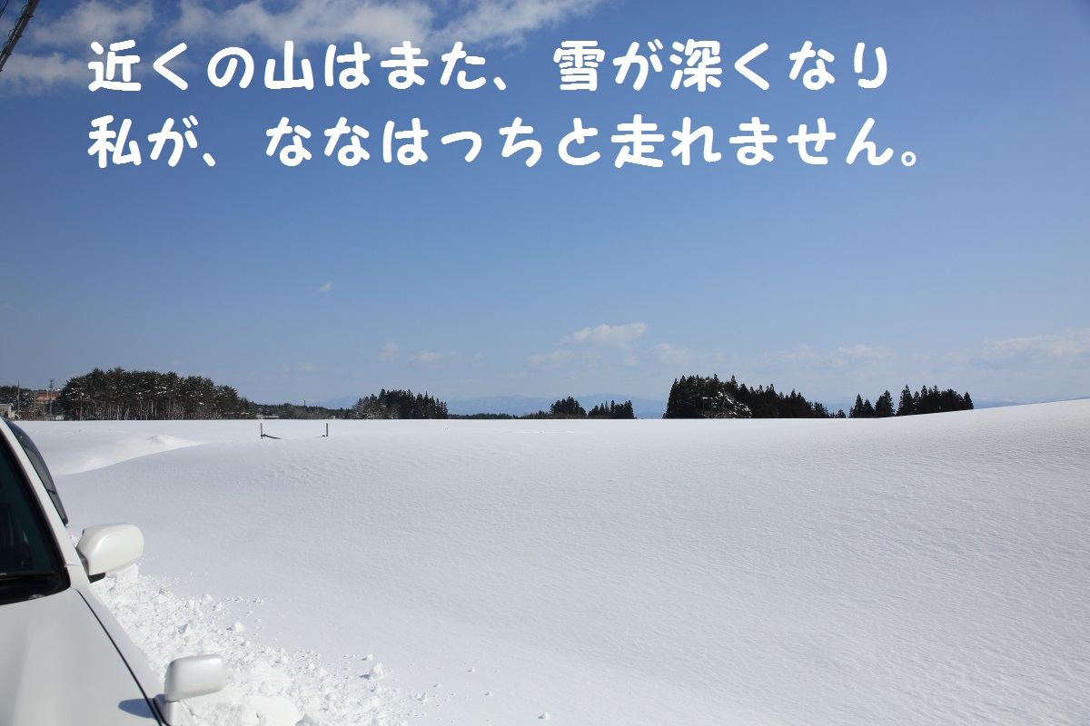 2_201403112020230a6.jpg