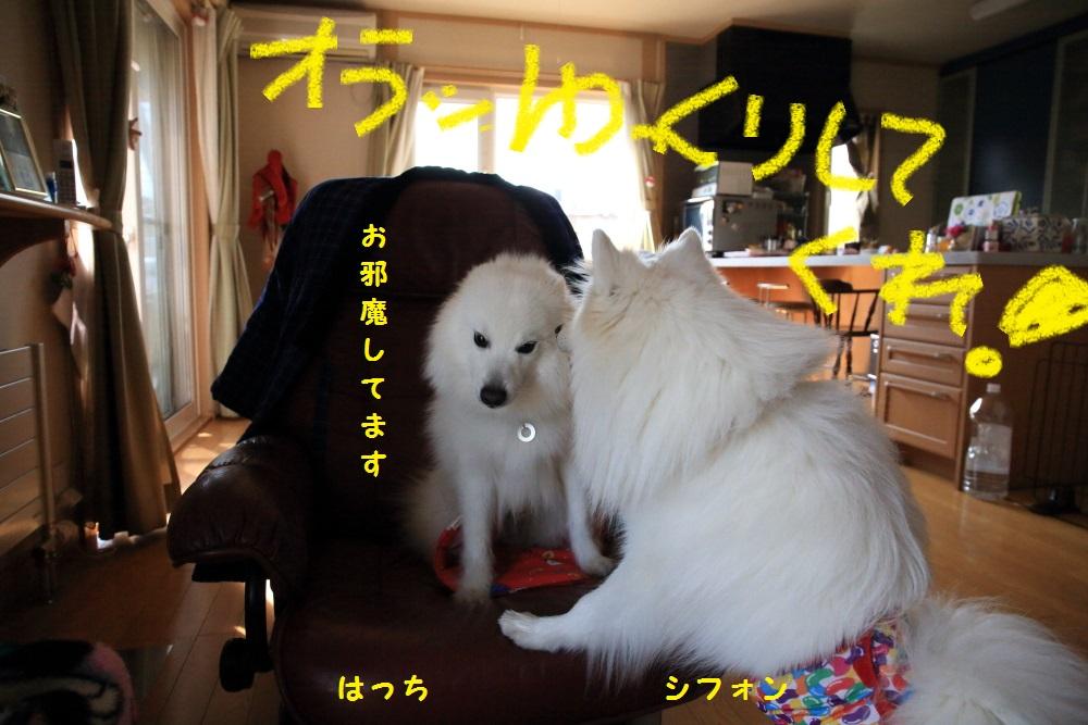 3_201403312124025e9.jpg