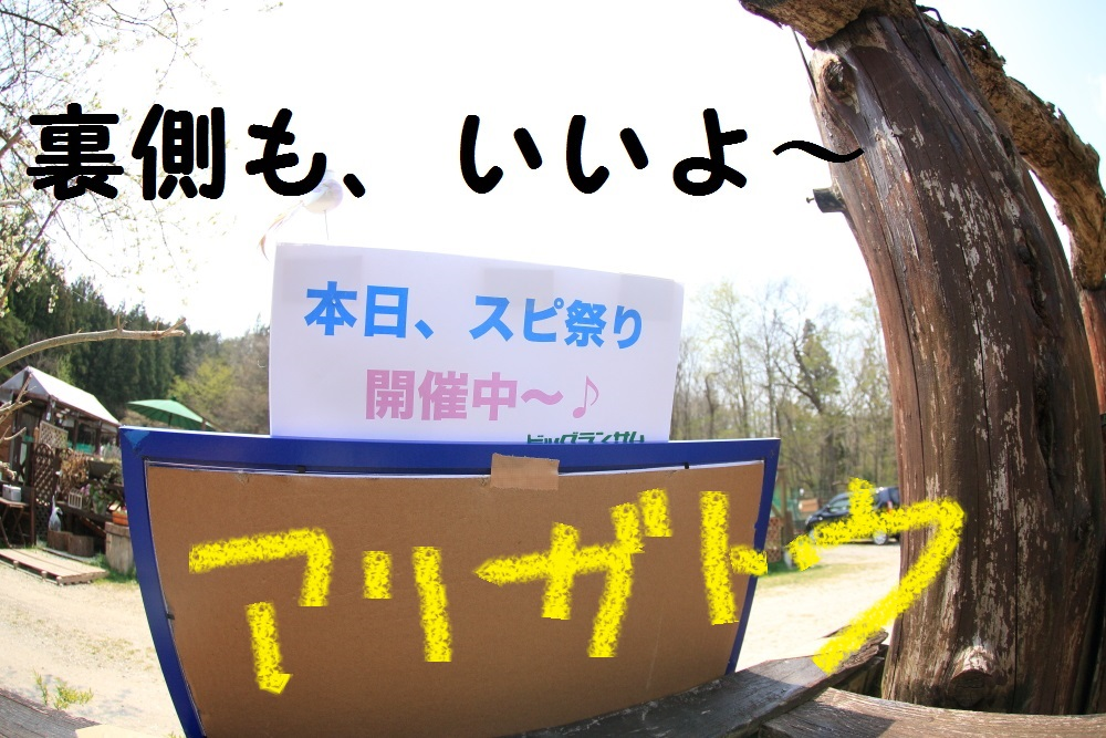 4_201404282123044ff.jpg