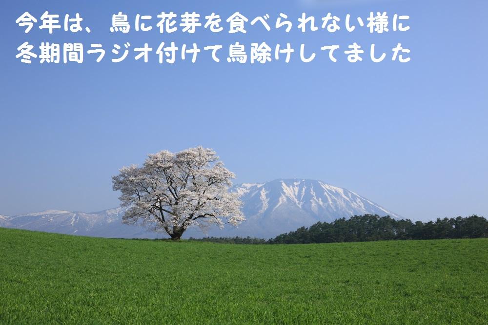 4_20140505213933424.jpg