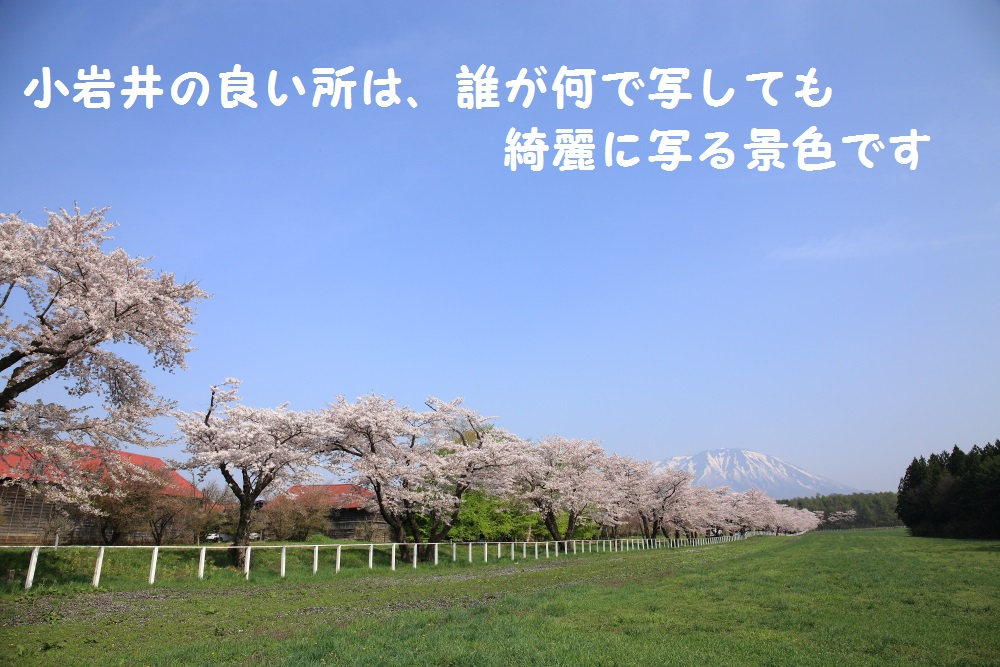 7_201405052141537a1.jpg