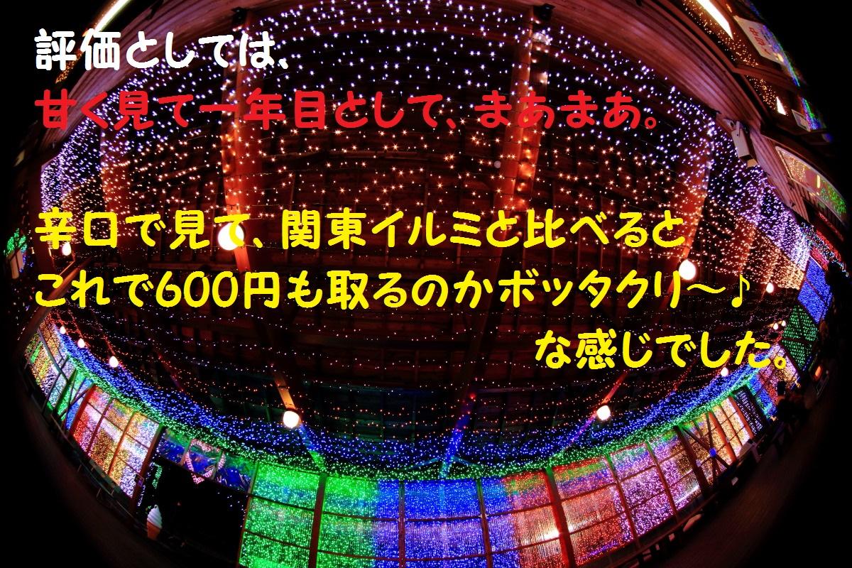 8_20140215185624253.jpg