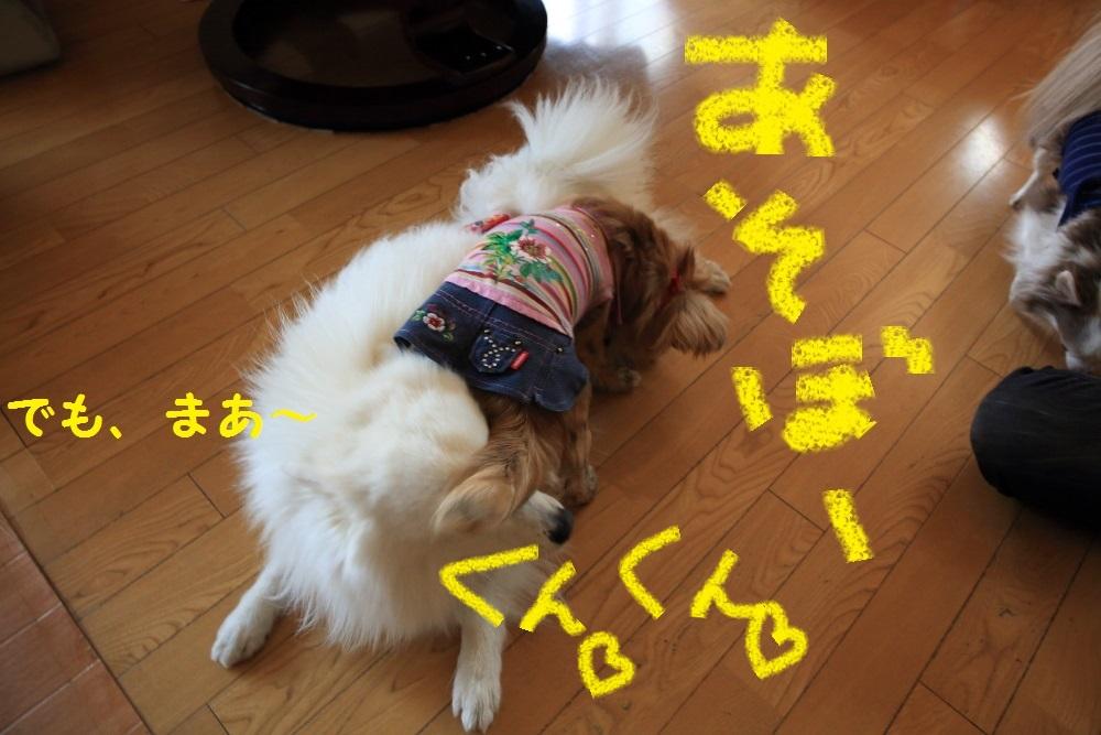 8_201403312125076dc.jpg