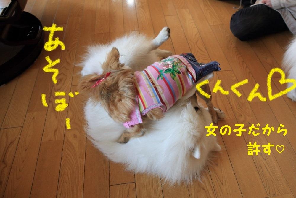 9_201403312125060ba.jpg