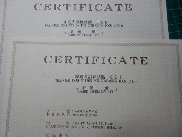 DSCN0085b.jpg