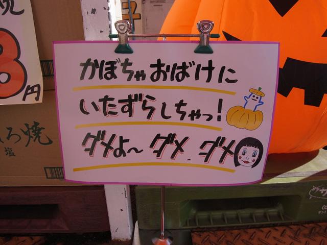 R0016610a.jpg
