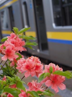 長者町駅 209系