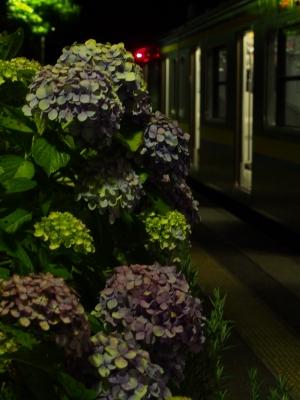 上総興津駅
