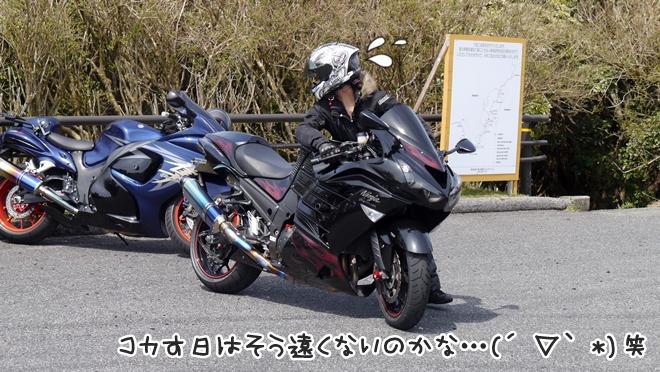 写真_63
