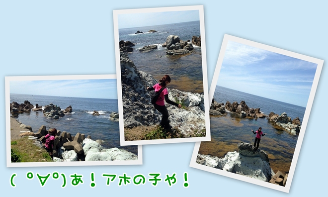 blog用4
