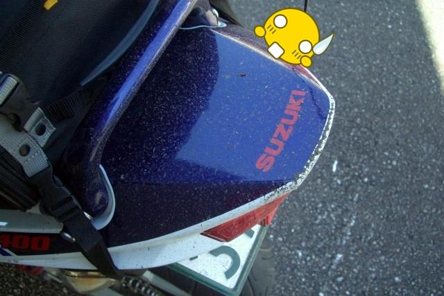CIMG0880.jpg