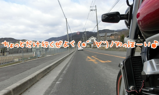 CIMG1426.jpg