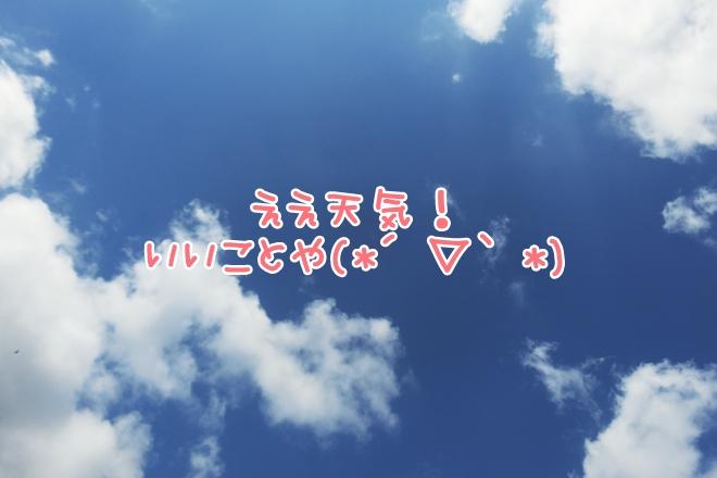 CIMG4698.jpg