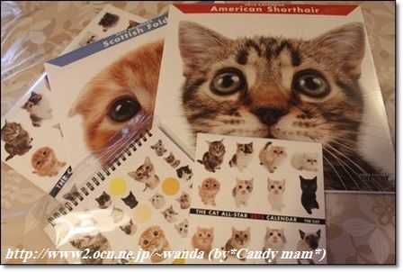 THE CAT:2015 カレンダー