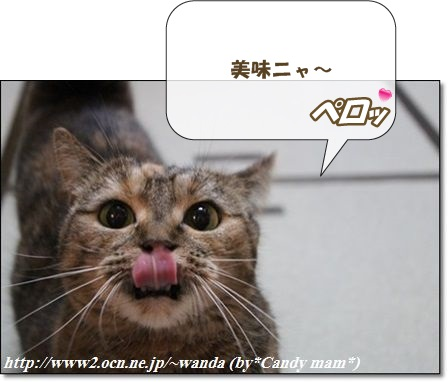マンチカン:鈴