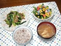 10/2 夕食 豚肉と小松菜の玉子炒め、こんにゃくと海藻のサラダ、もやしと油揚げの味噌汁、雑穀ごはん
