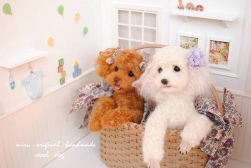 レッド&ホワイト ② (3)
