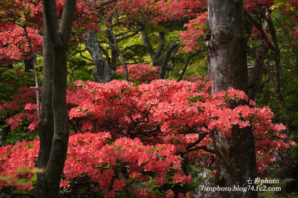 2014-05-19_箱根美術館_0010_edited-1