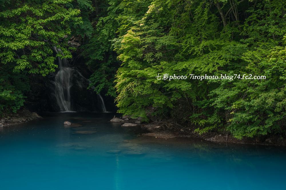 2014-05-25_四万ダム_0065