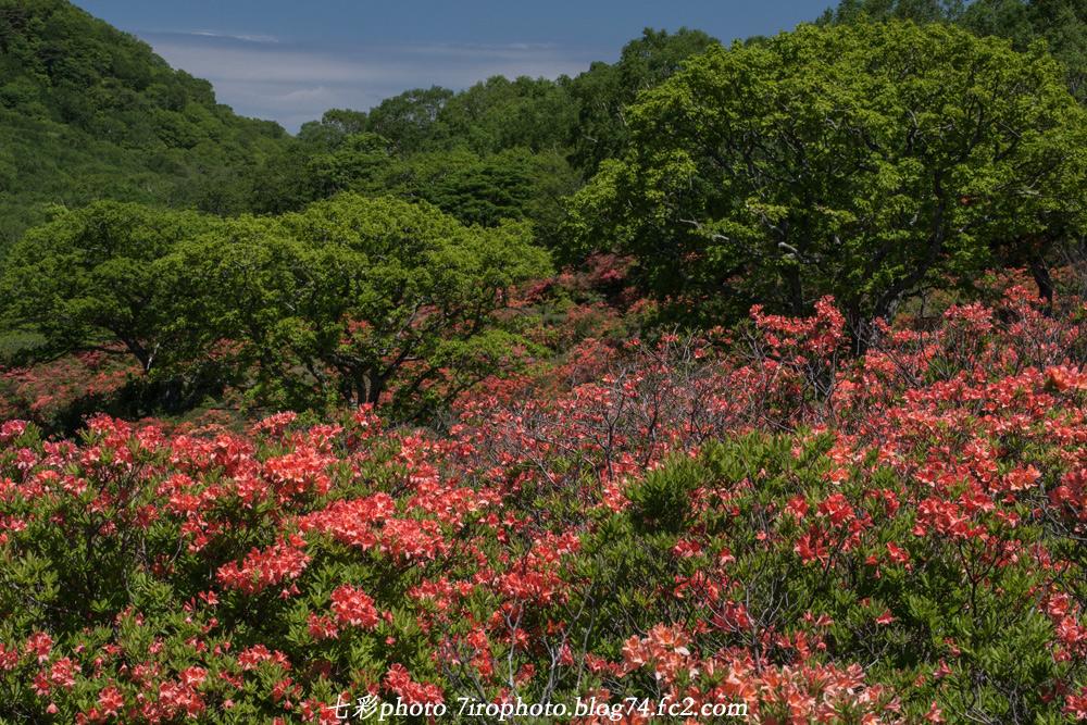 2014-06-15_会津赤城_01072