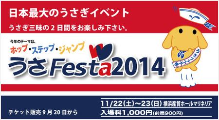 usafesta2014.jpg