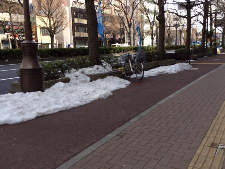 2014-02-19川崎雪
