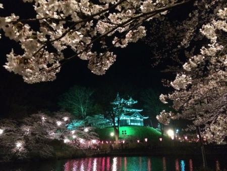 2014-04-10桜2