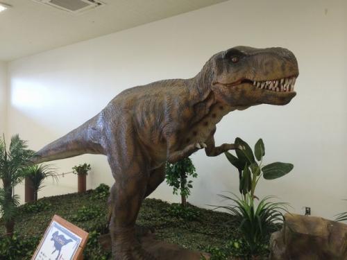 2014-05-06ティラノサウルス
