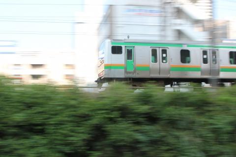 s_IMG_4810.jpg