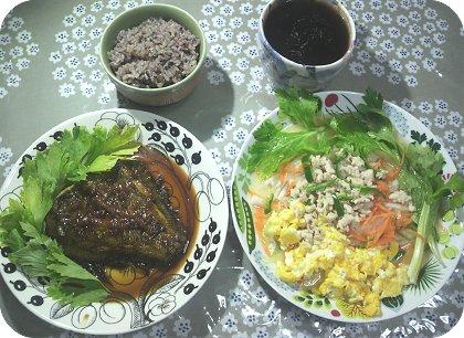 4-19 60円カレイと中華風サラダ