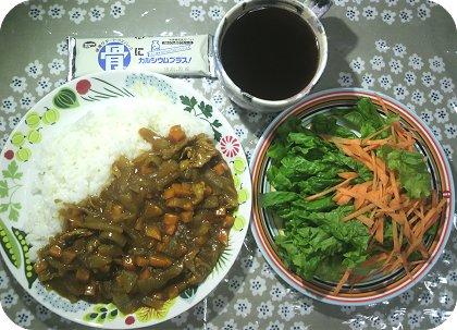 4-25カレーとサラダ菜