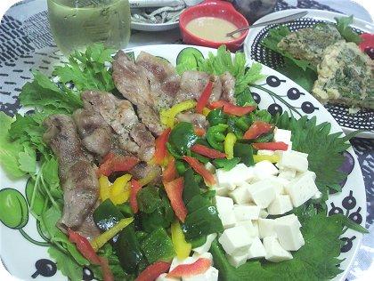 10-10お豆腐サラダに大葉のお好み焼き残り