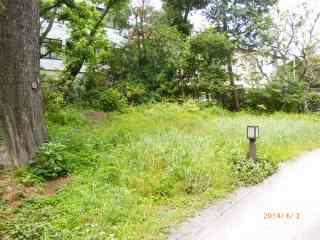 s-P1060821池袋の森