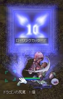 iguD3.jpg