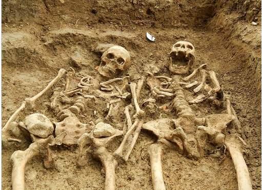 手つなぎ遺骨700年