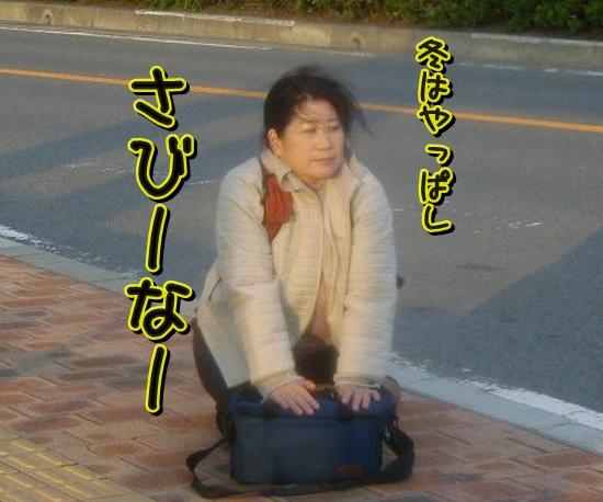 Baidu IME_2014-3-15_3-36-52