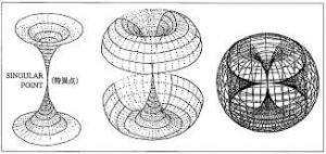 トーラス構造