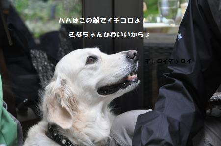 20140920-8_convert_20141003102209.jpg