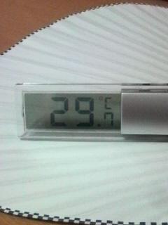 アルツ君の居室の温度