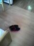 居室の新しい床002
