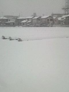 snow_2014_02_14