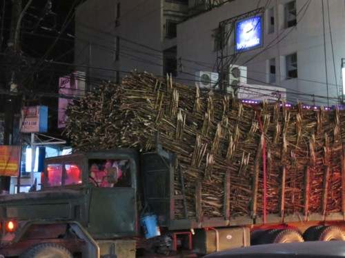 sugar cane ele-wire (1)