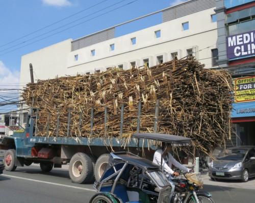 sugar cane truck (1)