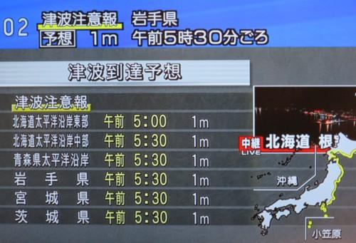 chile tsunami (14)
